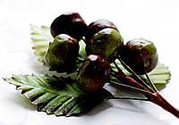Бутоньерка Дикие яблоки на проволоке с листиками, декоративные ягоды