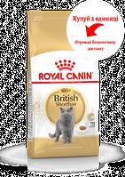 Корм Роял Канин для британцев Royal Canin British Shorthair Adult 10 кг