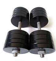 Гантелі металеві Розбірні 2 шт по 38 кг полімерне покриття для будинку спортзалу (загальна вага 76кг набірні)