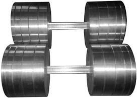 Гантелі 2 по 40 кг розбірні метал (металеві гантелі розбірні наборні набірні для будинку металеві)