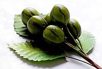 Бутоньерка Ягоды Зеленые на проволоке с листиками, декоративные ягоды
