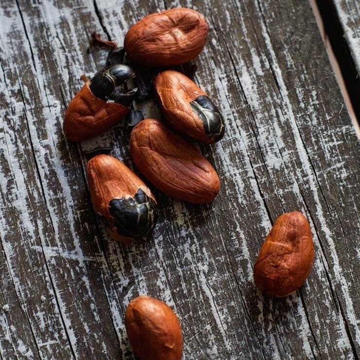 Какао бобы отборные. 50 грамм