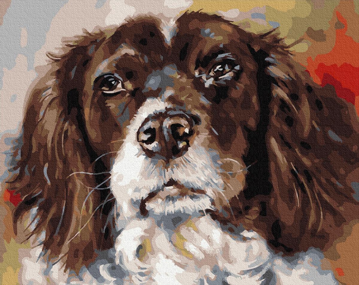 Картина за номерами Портрет лучшего друга GX25179 40х50см набір для розпису, фарби та пензлі набір для