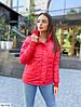 Женская модная осенняя теплая короткая куртка, фото 2