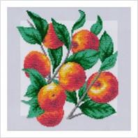 """Схема для вишивки бісером """"Яблука"""" (Т-1056)"""