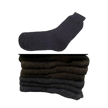 Носки мужские демисезонные * Житомирские* синий, 29-31