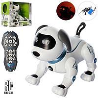 Собака музыкальная на радиоуправлении, сенсорная, 20 см, танцует