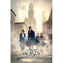 "Постер ""Fantastic Beasts (New York Streets)"""