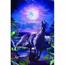"""Постер """"Lassen-A Midnight Stroll"""""""