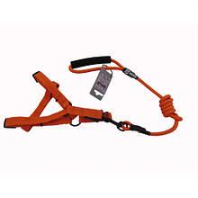 Комплект шлея с поводком AnimAll HJ-Y304-LН для животных M 1x120x2 см оранжевый