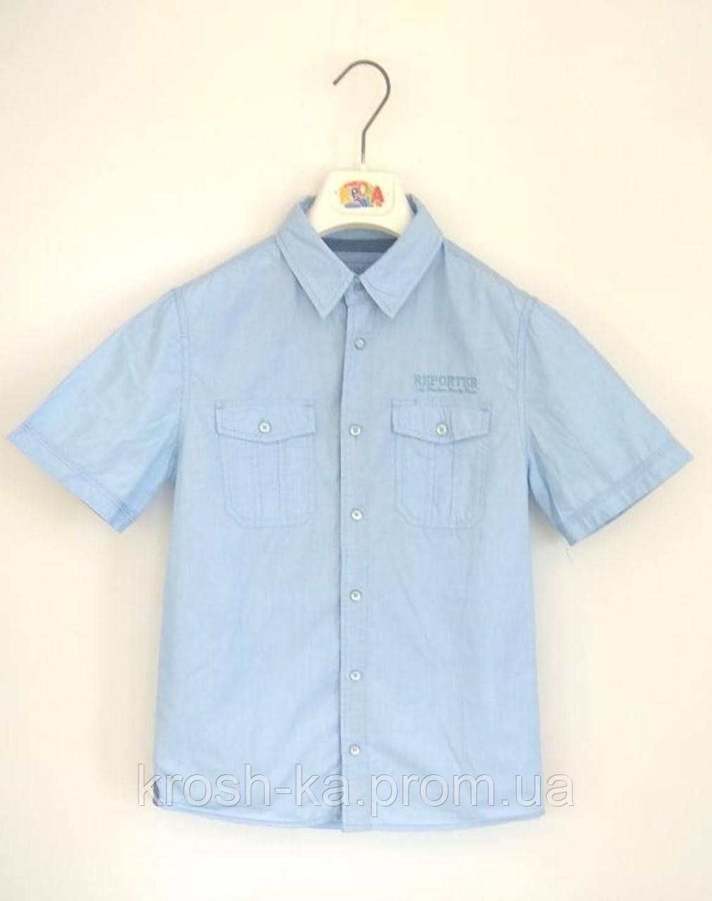 Рубашка для мальчика Reporter Польша голубой 19-431-1