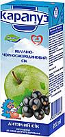 Сік дитячий яблучно-чорносмородиновий 6м+ 200мл Карапуз 1060076
