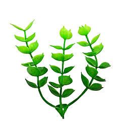 Добавка самшит світло зелений 7 см (50 шт. в уп.)