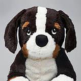 HOPPIG ХОППІГ, Іграшка м'яка, пес, бернська вівчарка36 см, фото 3