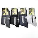 Спортивні чоловічі шкарпетки «Спорт+» носки, фото 3