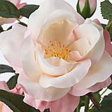 FEJKA ФЕЙКА, Штучна рослина в горщику, для приміщення/вулиці, Троянда рожевий12 см, фото 4
