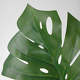 SMYCKA СМЮККА, Штучний листок, Монстера, зелений80 см, фото 3
