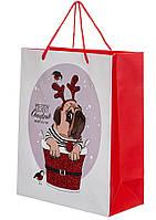 Пакет новогодний   55*40*15 (8209-017)