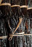 Ваниль бурбонная ЭКСТРА. Ваниль натуральная. Ваниль настоящая. 1 стручок, фото 2