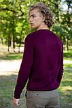 Свитер мужской 117R007(7206) цвет Сливовый, фото 4