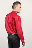 Рубашка Fra №878-63 цвет Красный, фото 4