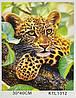 Картина за номерами KTL 1312 Леопард, 40 х 30 см, в коробці