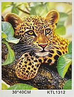 Картина за номерами KTL 1312 Леопард, 40 х 30 см, в коробці, фото 1