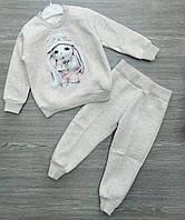 """Модный костюм детский утепленный """"2465"""" 1-4 года Серый Оптом"""