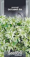 Молочай Снежный пик, 0.5 г, SeedEra  Цветы садовые для клумбы