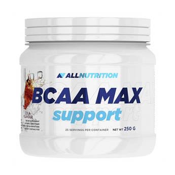 БЦАА AllNutrition BCAA Max (250 г) алл нутришн black currant