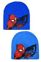 Шапки для мальчиков, DISNEY, 52-54 см,  № SP-A-HAT-308, фото 1