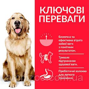 HILL'S SCIENCE PLAN Adult Perfect Weight Large Breed Сухой Корм для Собак с курицей - 12 кг, фото 2