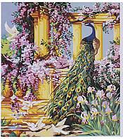Картина по номерам KTL 0088 Павлин, 40 х 30 см, в коробке