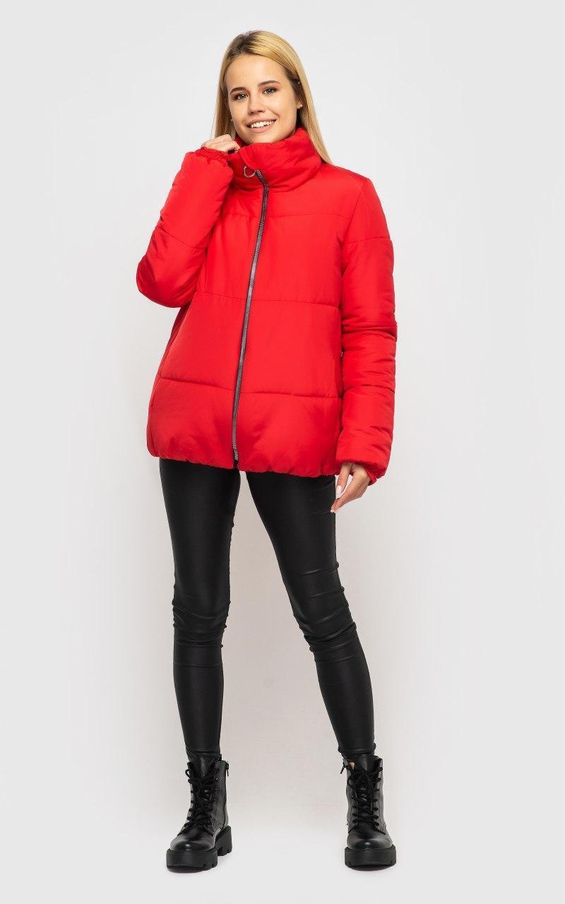 Короткая куртка зимняя с воротником стойкой в расцветках (р.р S - XXL) 45ki509