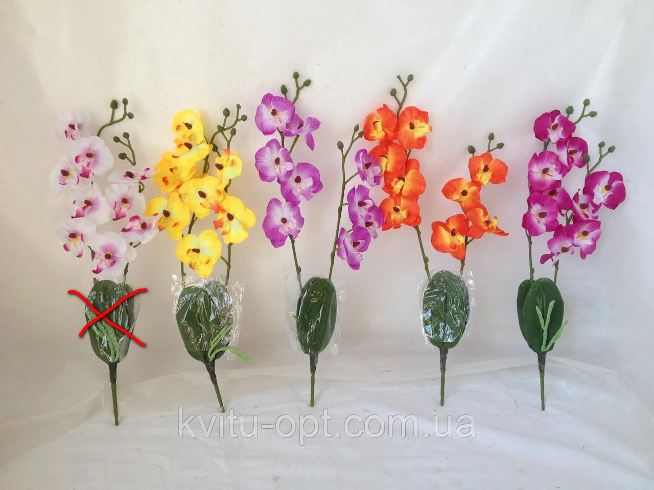 Орхидея  фаленопсис двойная средняя с латексным листьями и корнем 40 см