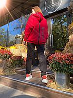 Теплий спортивний костюм жіночий з блискавкою на спині і штанинах (р. 42-48) 71msp1163, фото 1