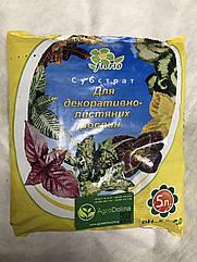 Субстрат Florio для декоративно-лиственных растений 5 л