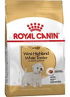 Royal Canin West Highland White Terrier Adult (Роял Канин Вест Хайленд Терьер Эдалт) для взрослых собак 3 кг