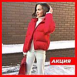 Осенняя короткая куртка женская черная красная бежевая серая белая горчица какао 42 44 46 дутая стиль, фото 2