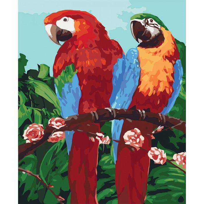 """Картина по номерам. Животные, птицы """" Королевские попугаи"""" 40*50см * KHO4051"""
