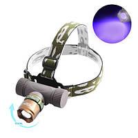 Ультрафиолетовый фонарь на лоб Police 6866-UV365 nm, ЗУ 220V/12V, ultra strong, zoom, фото 1
