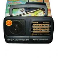 Портативный радиоприемник NEEKA-NK-409AC