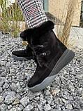 Женские ботинки замшевые зимние черные, фото 8
