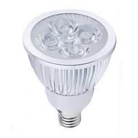 Светодиодные лампы led Oasisled e14 5Вт, точечные холодный цвет
