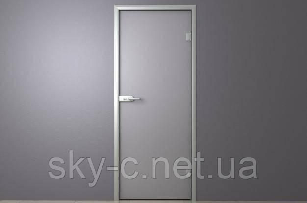 Стеклянные двери распашные в алюминиевой коробке