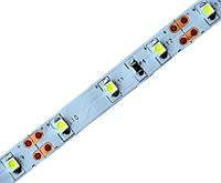 Лед лента Oasisled 4,8W герметичная smd3528 Еко синий свет