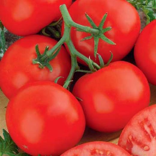 Семена томата Аврора F1 (5 г)