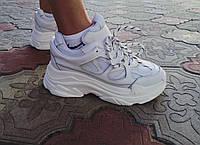 Жіночі кросівки Cavaleti White