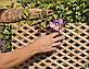 Деревянная декоративная решетка — 1R (Ольха, Бук, Клен, Ясень, Дуб), фото 7