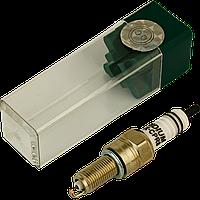 Свічка запалювання EIX-CPR8 INT (CPR8EA-9 NGK)